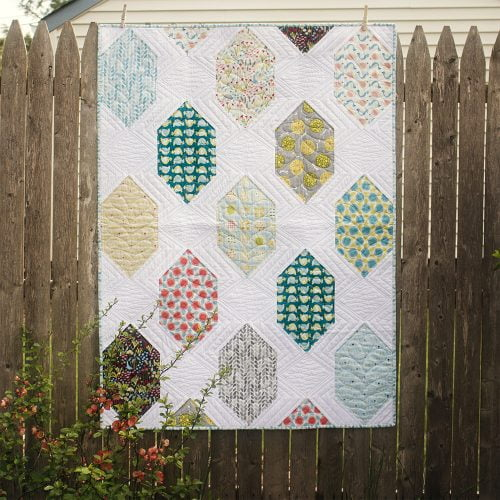 Spaced Out Quilt in Backyard Garden